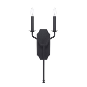 Aster Black Iron Two-Light Wall Sconce