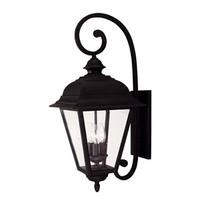 Evelyn Textured Black Three-Light Outdoor Wall Sconce