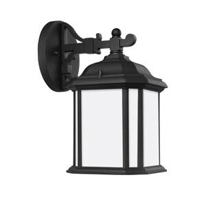Preston Black Energy Star 12-Inch LED Outdoor Wall Lantern