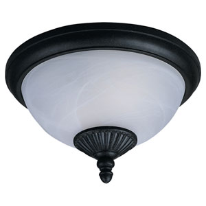 Anita Two-Light Outdoor Ceiling Light