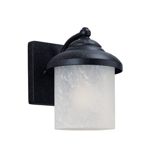 Anita Forged Iron Energy Star LED Outdoor Wall Lantern