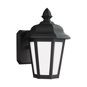 Wellington Black 7-Inch One-Light Outdoor Wall Lantern