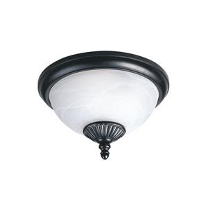 Anita Black Energy Star Two-Light LED Outdoor Ceiling Flush Mount