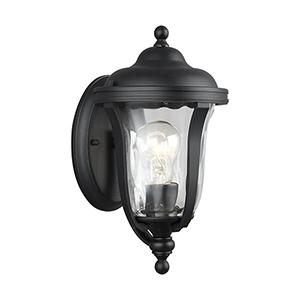 Charlotte Black 6-Inch One-Light Outdoor Wall Lantern