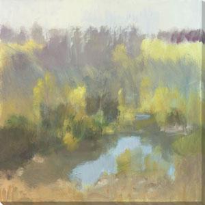 Quinn Hidden Pond 28 x 28 In. Wall Art
