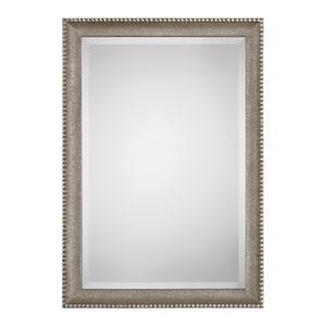 Hayden Rectangular Champagne Silver Mirror