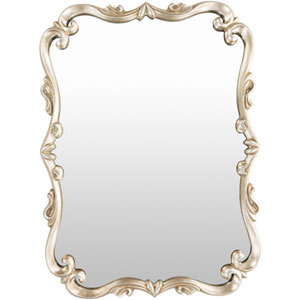 Aster Rectangular Champagne Wall Mirror