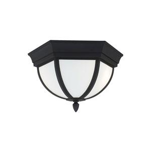 Charles Black Energy Star Two-Light LED Outdoor Ceiling Flush Mount
