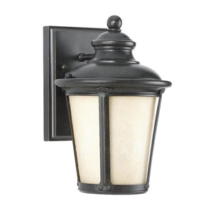 George Cape Burled Iron One-Light May Outdoor Wall Light