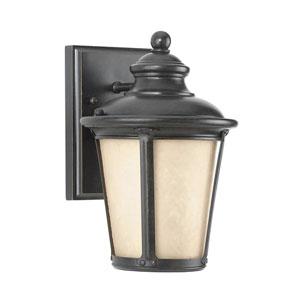 George Burled Iron Energy Star Dark Sky LED Outdoor Wall Lantern