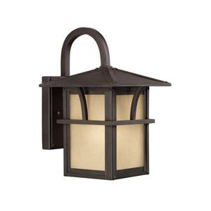 Ava Bronze Energy Star 11-Inch LED Outdoor Wall Lantern