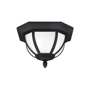 James Black Energy Star Two-Light LED Outdoor Ceiling Flush Mount