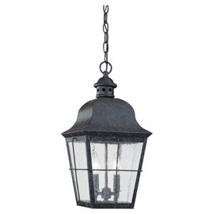 Hazel Bronze Outdoor Hanging Lantern