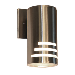 Pax Stainless Steel One-Light Outdoor Wall Light