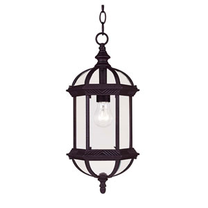 James Textured Black Eight-Inch One-Light Outdoor Mini Pendant