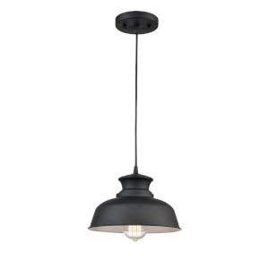 Hayes Matte Black 14-Inch One-Light Pendant