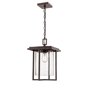 Pax Bronze Eight-Inch One-Light Outdoor Pendant
