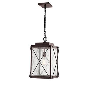 Jackson Bronze 11-Inch One-Light Outdoor Pendant