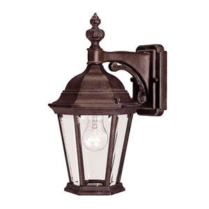 Webster Walnut Patina One-Light Outdoor Wall Sconce
