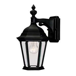 Webster Textured Black One-Light Outdoor Wall Sconce