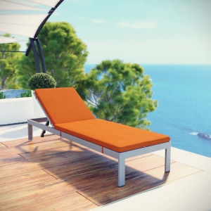 Darren Silver and Orange Outdoor Patio Aluminum Chaise with Cushion