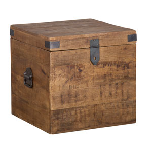 Lola Brown 18 In. Mango Wood Square Trunk