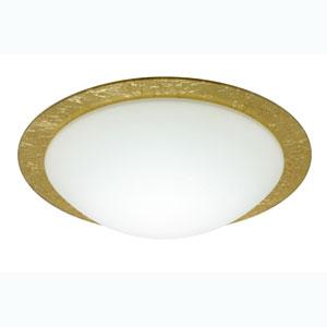 Series 977 Gold Foil Ring Flush Mount