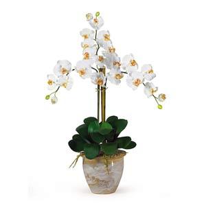 Triple Stem Phalaenopsis Silk Orchid Arrangement