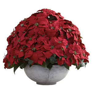 Red Giant Poinsettia Arrangement with Decorative Planter