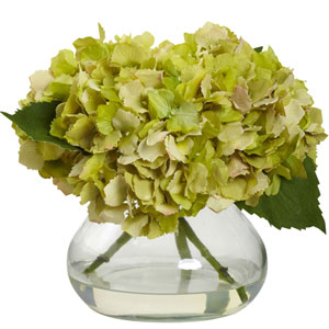 Green Blooming Hydrangea with Vase