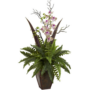 White Orchid and Fern Arrangement