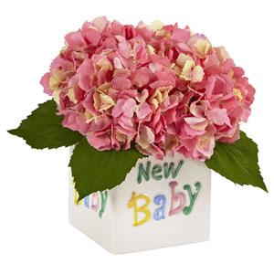 Hydrangea in New Baby Ceramic