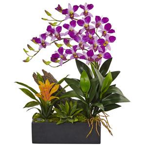 Purple Dendrobium and Bromeliad Arrangement
