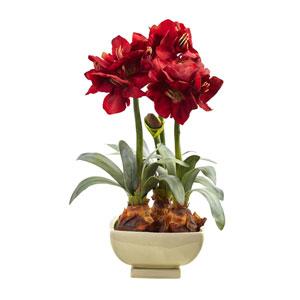Red Amarylis Arrangement with Vase