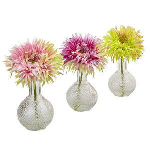 Daisy with Glass Vase, Set of Three