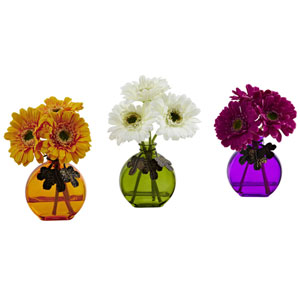 Multicolor Gerber Daisy with Colored Vase, Set of Three