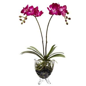 Pink Double Phalaenopsis Elegance Arrangement