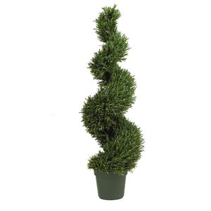 4-Foot Indoor/Outdoor Rosemary Spiral Tree