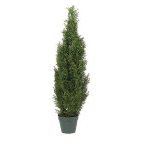 4-Foot Indoor/ Outdoor Cedar Silk Tree