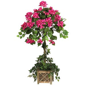 Bougainvillea Topiary Silk Plant with Wood Box
