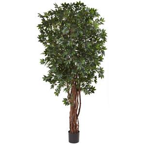Green 7.5 Foot Lychee Silk Tree