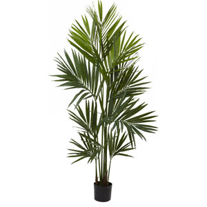 Green 7 Foot Kentia Palm Silk Tree
