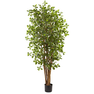 Green 6 Foot Black Olive Silk Tree