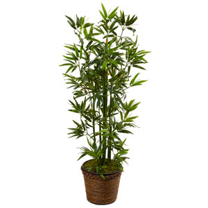 4 Ft. Bamboo Tree in Coiled Rope Planter