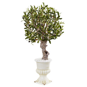 3 Ft. Olive Tree in White Urn