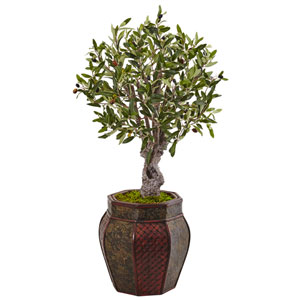 3 Ft. Olive Tree in Weave Panel Planter
