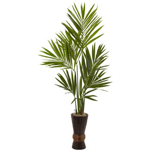 Green 6 Foot Kentia Tree with Bamboo Planter