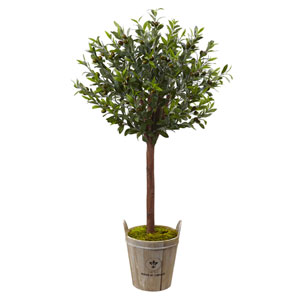 Olive Topiary Tree with European Barrel Planter