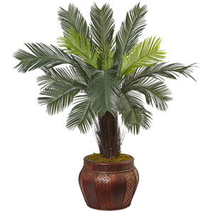 3.5 Ft. Cycas Tree in Wood Planter