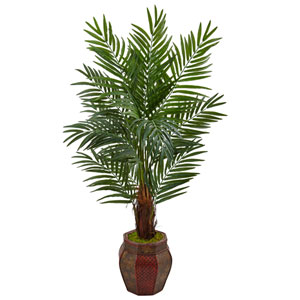 5 Ft. Areca Palm Tree in Weave Planter